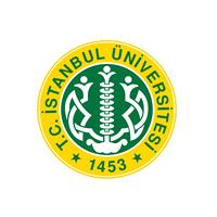 istanbul_logo